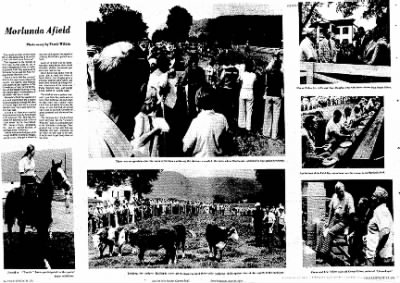 Sunday Gazette-Mail from Charleston, West Virginia on June 30, 1974 · Page 93