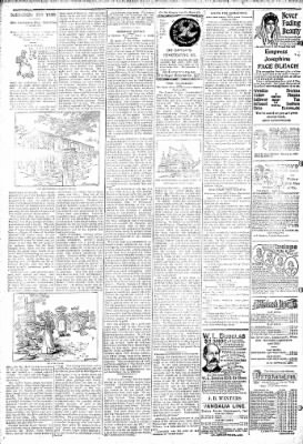 Logansport Pharos-Tribune from Logansport, Indiana on March 13, 1895 · Page 6