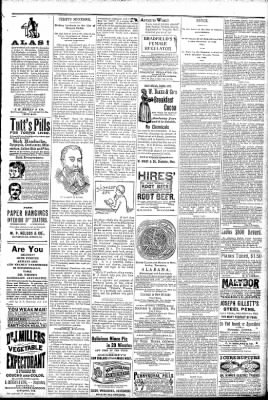 Logansport Pharos-Tribune from Logansport, Indiana on March 27, 1891 · Page 7