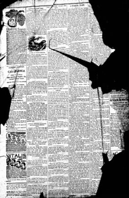 Logansport Pharos-Tribune from Logansport, Indiana on July 17, 1896 · Page 10