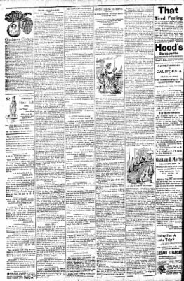 Logansport Pharos-Tribune from Logansport, Indiana on July 18, 1896 · Page 2