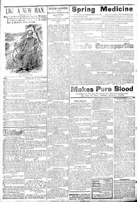 Logansport Pharos-Tribune from Logansport, Indiana on March 23, 1895 · Page 2