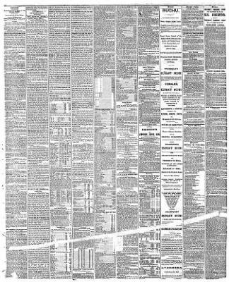 Chicago Tribune from Chicago, Illinois on December 12, 1868 · 3