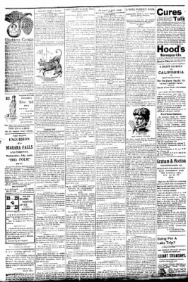 Logansport Pharos-Tribune from Logansport, Indiana on July 21, 1896 · Page 2