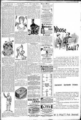 Logansport Pharos-Tribune from Logansport, Indiana on April 8, 1891 · Page 2