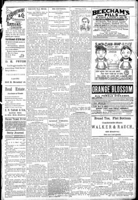 Logansport Pharos-Tribune from Logansport, Indiana on April 15, 1891 · Page 3