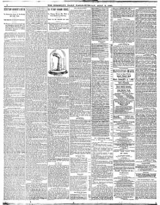 The Brooklyn Daily Eagle from Brooklyn, New York on July 9, 1895 · Page 2