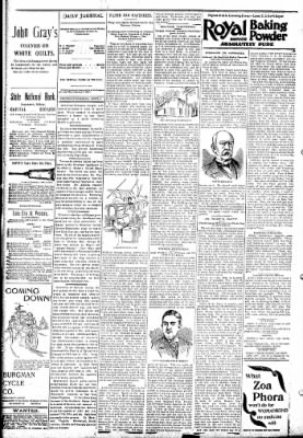 Logansport Pharos-Tribune from Logansport, Indiana on April 4, 1895 · Page 4