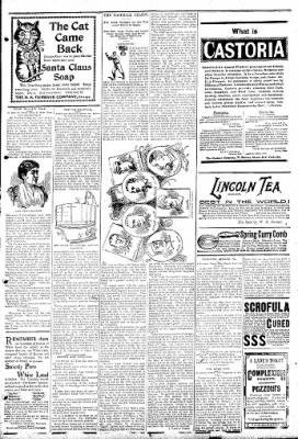 Logansport Pharos-Tribune from Logansport, Indiana on April 4, 1895 · Page 7