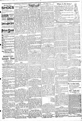 Logansport Pharos-Tribune from Logansport, Indiana on April 5, 1895 · Page 3