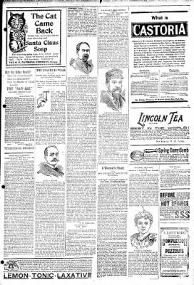 Logansport Pharos-Tribune from Logansport, Indiana on April 6, 1895 · Page 7