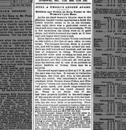 The Sun from New York, New York on January 10, 1896 · Page 4