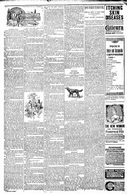 Logansport Pharos-Tribune from Logansport, Indiana on December 24, 1897 · Page 22