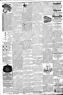 Logansport Pharos-Tribune from Logansport, Indiana on July 29, 1896 · Page 2