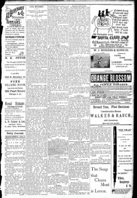 Logansport Pharos-Tribune from Logansport, Indiana on April 23, 1891 · Page 3