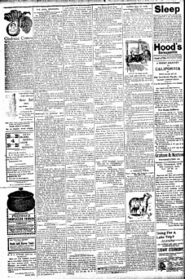 Logansport Pharos-Tribune from Logansport, Indiana on July 30, 1896 · Page 2