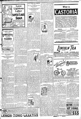 Logansport Pharos-Tribune from Logansport, Indiana on April 14, 1895 · Page 7
