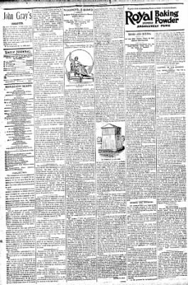 Logansport Pharos-Tribune from Logansport, Indiana on August 1, 1896 · Page 4