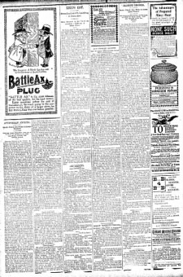 Logansport Pharos-Tribune from Logansport, Indiana on August 1, 1896 · Page 6