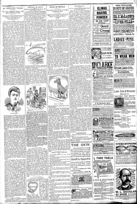 Logansport Pharos-Tribune from Logansport, Indiana on May 1, 1891 · Page 6