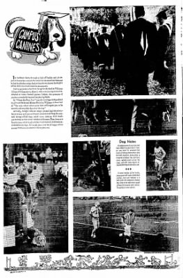 The Courier News from Blytheville, Arkansas on May 30, 1967 · Page 7