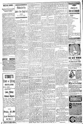 Logansport Pharos-Tribune from Logansport, Indiana on January 7, 1898 · Page 22