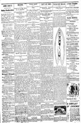 Logansport Pharos-Tribune from Logansport, Indiana on January 8, 1898 · Page 21