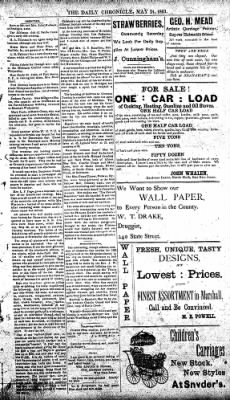 The Daily Chronicle from Centralia, Washington on May 25, 1893 · Page 3
