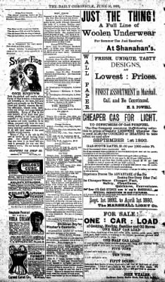 The Daily Chronicle from Centralia, Washington on June 16, 1893 · Page 4