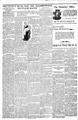 Logansport Pharos-Tribune from Logansport, Indiana on January 15, 1898 · Page 20