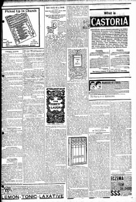 Logansport Pharos-Tribune from Logansport, Indiana on May 1, 1895 · Page 7