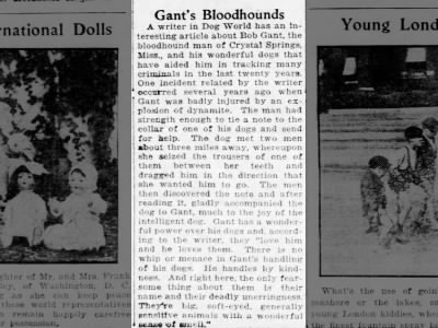 Bob Gants bloodhounds 23 Jul 1922 Brooklyn Daily Eagle NY