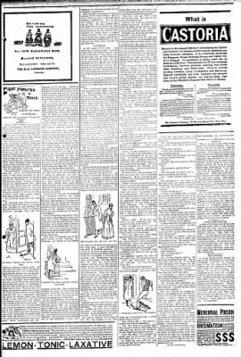 Logansport Pharos-Tribune from Logansport, Indiana on May 8, 1895 · Page 7
