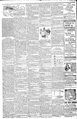 Logansport Pharos-Tribune from Logansport, Indiana on January 25, 1898 · Page 22