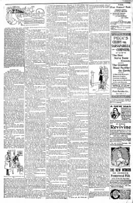 Logansport Pharos-Tribune from Logansport, Indiana on January 28, 1898 · Page 22