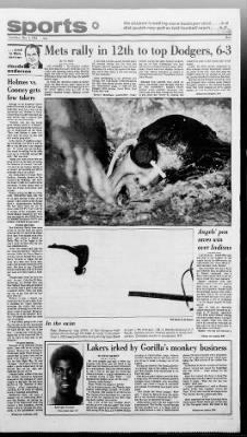The San Bernardino County Sun from San Bernardino, California on May 4, 1982 · Page 36