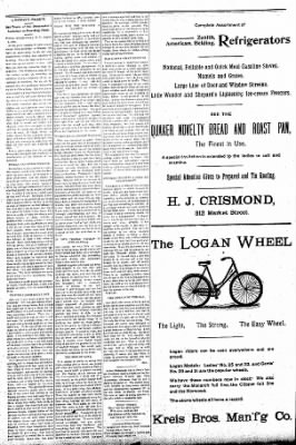 Logansport Pharos-Tribune from Logansport, Indiana on August 9, 1896 · Page 4