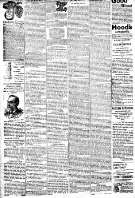 Logansport Pharos-Tribune from Logansport, Indiana on August 9, 1896 · Page 6