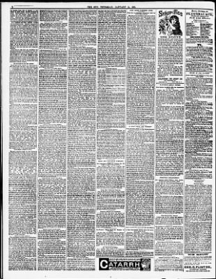 The Sun from New York, New York on January 15, 1891 · Page 2