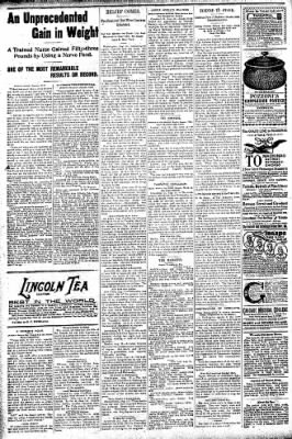 Logansport Pharos-Tribune from Logansport, Indiana on August 13, 1896 · Page 6