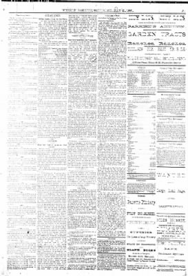 The Weekly Gazette from Colorado Springs, Colorado on May 21, 1881 · Page 3