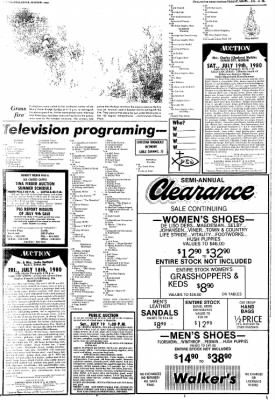 The Chillicothe Constitution-Tribune from Chillicothe, Missouri on July 14, 1980 · Page 8