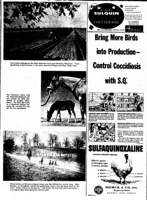 The Algona Upper Des Moines from Algona, Iowa on March 13, 1956 · Page 87