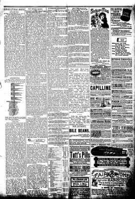 The Algona Republican from Algona, Iowa on July 16, 1890 · Page 3