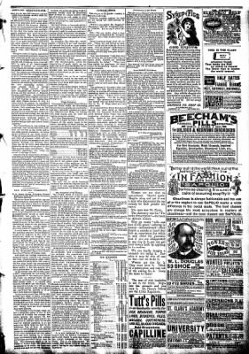 The Algona Republican from Algona, Iowa on September 3, 1890 · Page 3