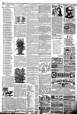 The Algona Republican from Algona, Iowa on September 17, 1890 · Page 7