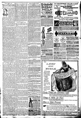 The Algona Republican from Algona, Iowa on October 22, 1890 · Page 7