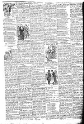 The Algona Republican from Algona, Iowa on December 24, 1890 · Page 3