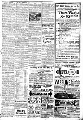 The Algona Republican from Algona, Iowa on January 14, 1891 · Page 7