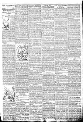 The Algona Republican from Algona, Iowa on February 4, 1891 · Page 7